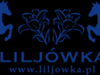 Pensjonat Liljówka-1