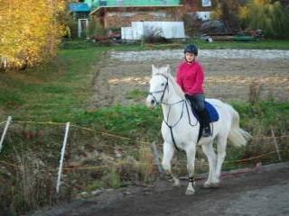 Pensjonat Laskonik - Laskowa-1