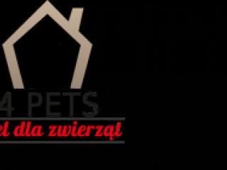 Hotel dla zwierząt Wrocław-1