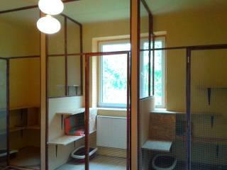 Hotel dla zwierząt Bielsko Biała-1