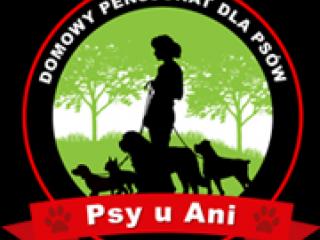 Pensjonat dla psów - Penclin-1